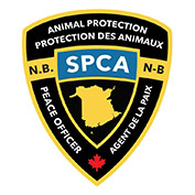 New Brunswick Society for the Prevention of Cruelty to Animals (NB SPCA)